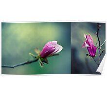 Tulip Tree Diptych Poster