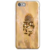 European paper wasps (Polistes dominula) at their nest.  iPhone Case/Skin