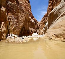 Wadi Zered (Wadi Hassa or Hasa) in western Jordan. by PhotoStock-Isra