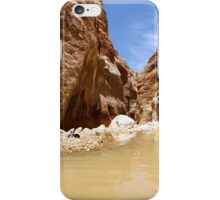 Wadi Zered (Wadi Hassa or Hasa) in western Jordan. iPhone Case/Skin