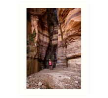 Wadi Zered (Wadi Hassa or Hasa) in western Jordan. Art Print