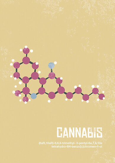 Cannabis by Daniel Seex