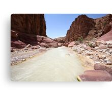 Wadi Zered (Wadi Hassa or Hasa) in western Jordan Canvas Print