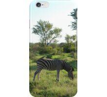 grazing iPhone Case/Skin