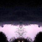 March 19 & 20 2012 Lightning Art by dge357