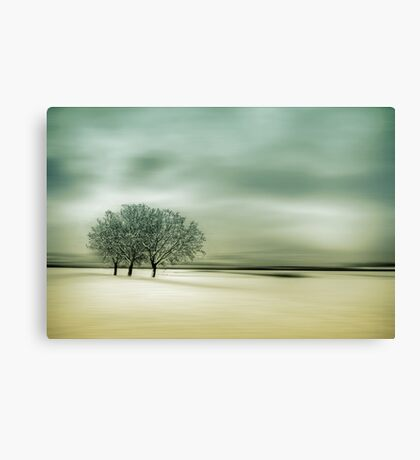 Standing Firm Canvas Print