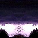 March 19 & 20 2012 Lightning Art 52 by dge357