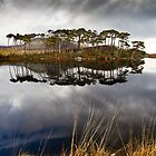 Derryclare 1 by Mark Carthy
