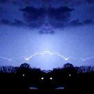 March 19 & 20 2012 Lightning Art 64 by dge357