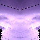March 19 & 20 2012 Lightning Art 78 by dge357