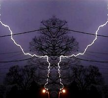 March 19 & 20 2012 Lightning Art 81 by dge357