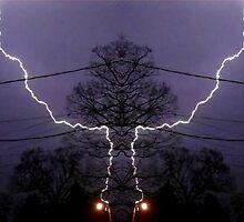 March 19 & 20 2012 Lightning Art 81 by dge357