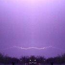 March 19 & 20 2012 Lightning Art 83 by dge357