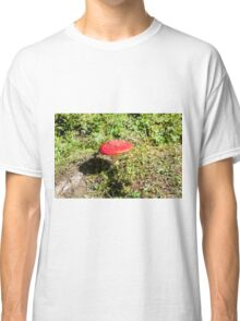 Classic red and white potted toadstool. Fly agaric or Fly amanita (Amanita muscaria) Classic T-Shirt