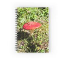 Classic red and white potted toadstool. Fly agaric or Fly amanita (Amanita muscaria) Spiral Notebook