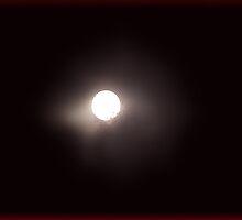Nocturnal No1 by ArtOfE