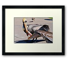 Fight over Free Lunch Framed Print
