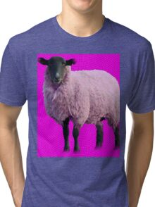 The Most Random Thing Ever Tri-blend T-Shirt