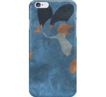 260 iPhone Case/Skin