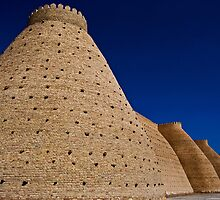Wall of the Bukhara Fortress, The Ark (2) by eddiechui