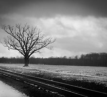 Rural Winter Railroad Tracks by Marcia Rubin