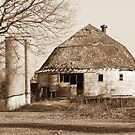 The Dougan Round Barn in Beloit, Wisconsin by Marcia Rubin