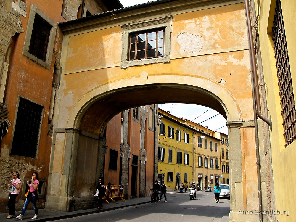 arch in coloured building  by Anne Scantlebury