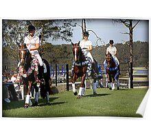 Mulawa Performace Horses Poster