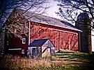 Big Red Wisconsin Barn  by Marcia Rubin