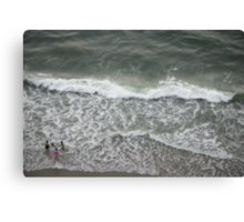 Frolic in the Sea Canvas Print
