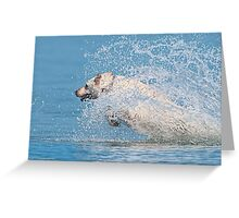 Playing in Water Greeting Card