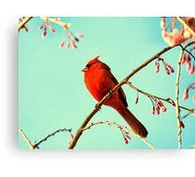Cardinal & Cherry Blossoms Canvas Print