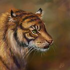 Tiger by Ashley Dadoun
