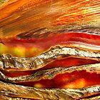 Firedragon by Kathie Nichols