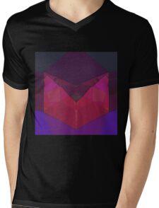 Raw Rubin Mens V-Neck T-Shirt