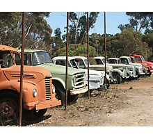 Vintage Trucks (7328) Photographic Print