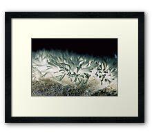 Fungi Tentacles Framed Print