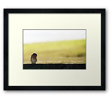 On A Perch Framed Print