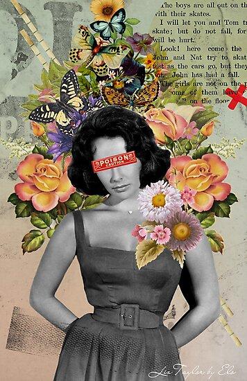 Liz Taylor by Elo Marc