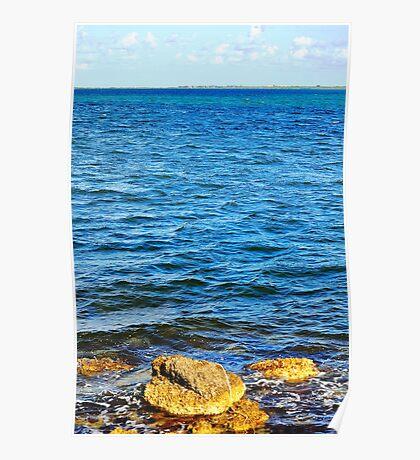 Biscayne Bay Shore Poster