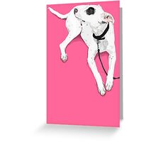 Hot Spotty Lottie  Greeting Card