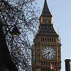 Clock Tower by karina5