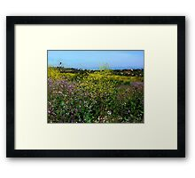Boomer Canyon Irvine Ranch Framed Print