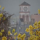 Springtide's Morning - Mañana De La Primavera by Bernhard Matejka