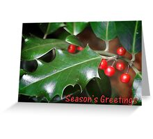 Season's Greetings - Holly Greeting Card