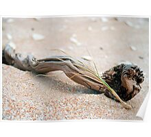 driftwood & grass (The Coorong) Poster