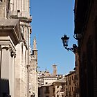Profiles in Toledo by Fabio Procaccini