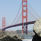 The Golden Gate Bridge  by Barrie Woodward