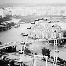Singapore Flyer by Nina Papiorek