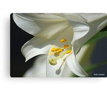 TRUMPET of Easter Canvas Print